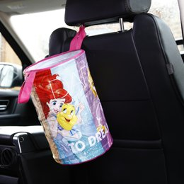 Disney Princess Car Bin Image